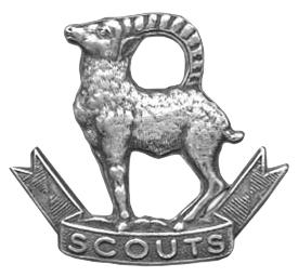 Ladakh Scouts
